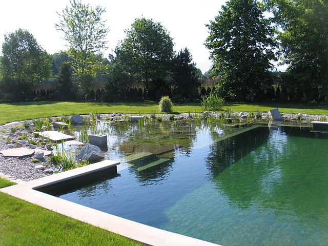 Natural Swimming Pool Opens in the Twin Cities: The First in ...